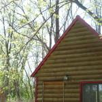 cabin spring